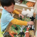 Boy playing with animal toys